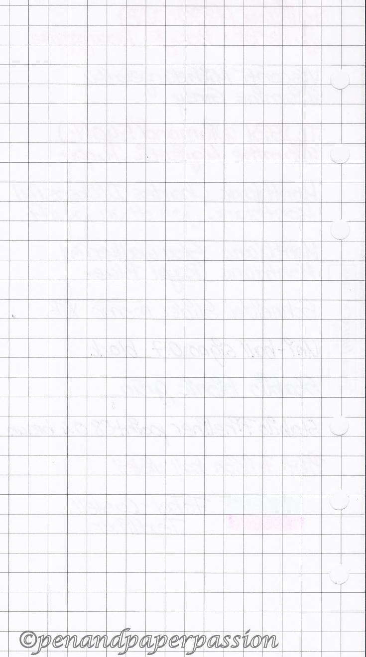 Filofax kariertes Notizpapier hinten