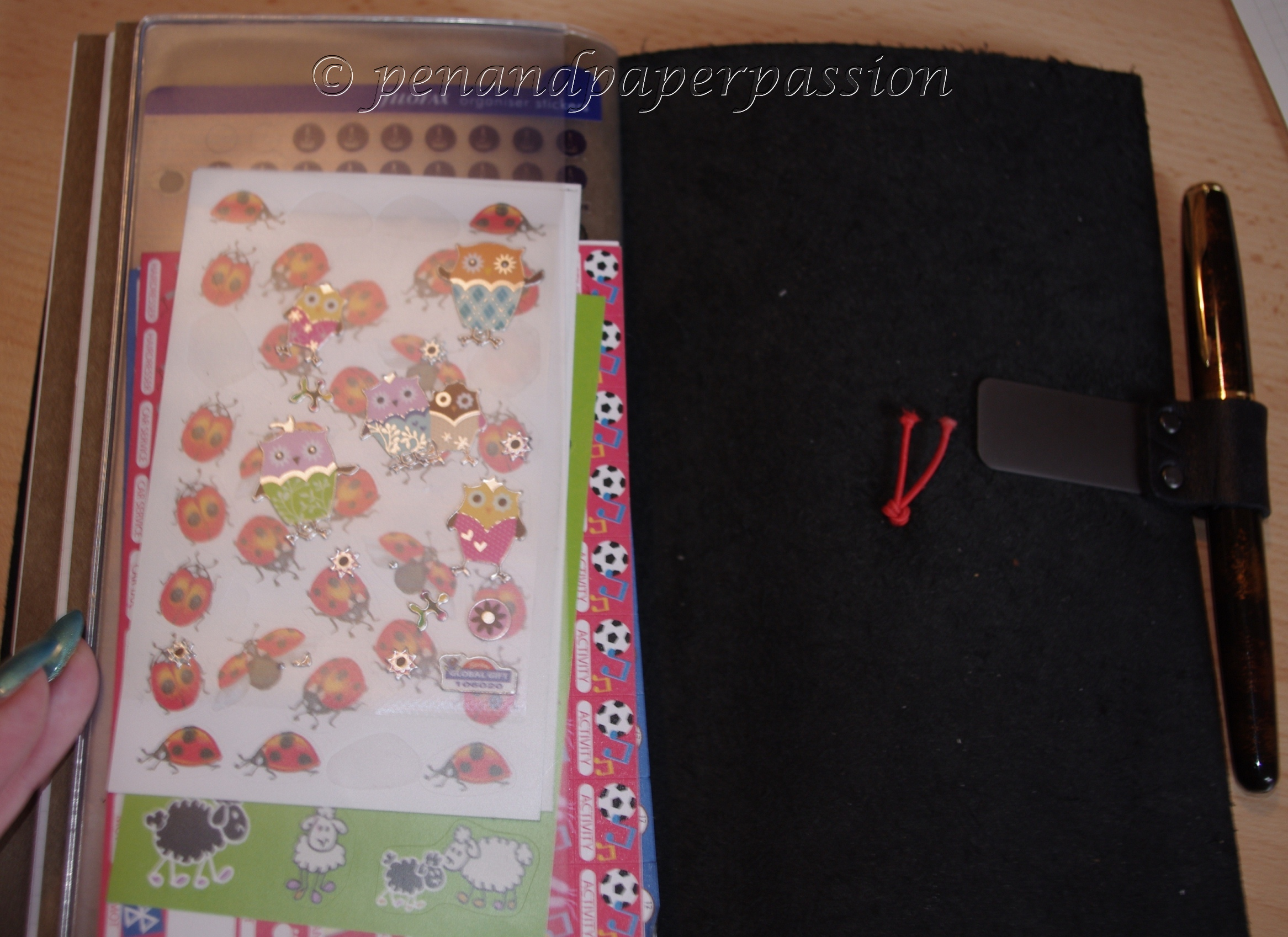 Midori Travelers Notebook 11