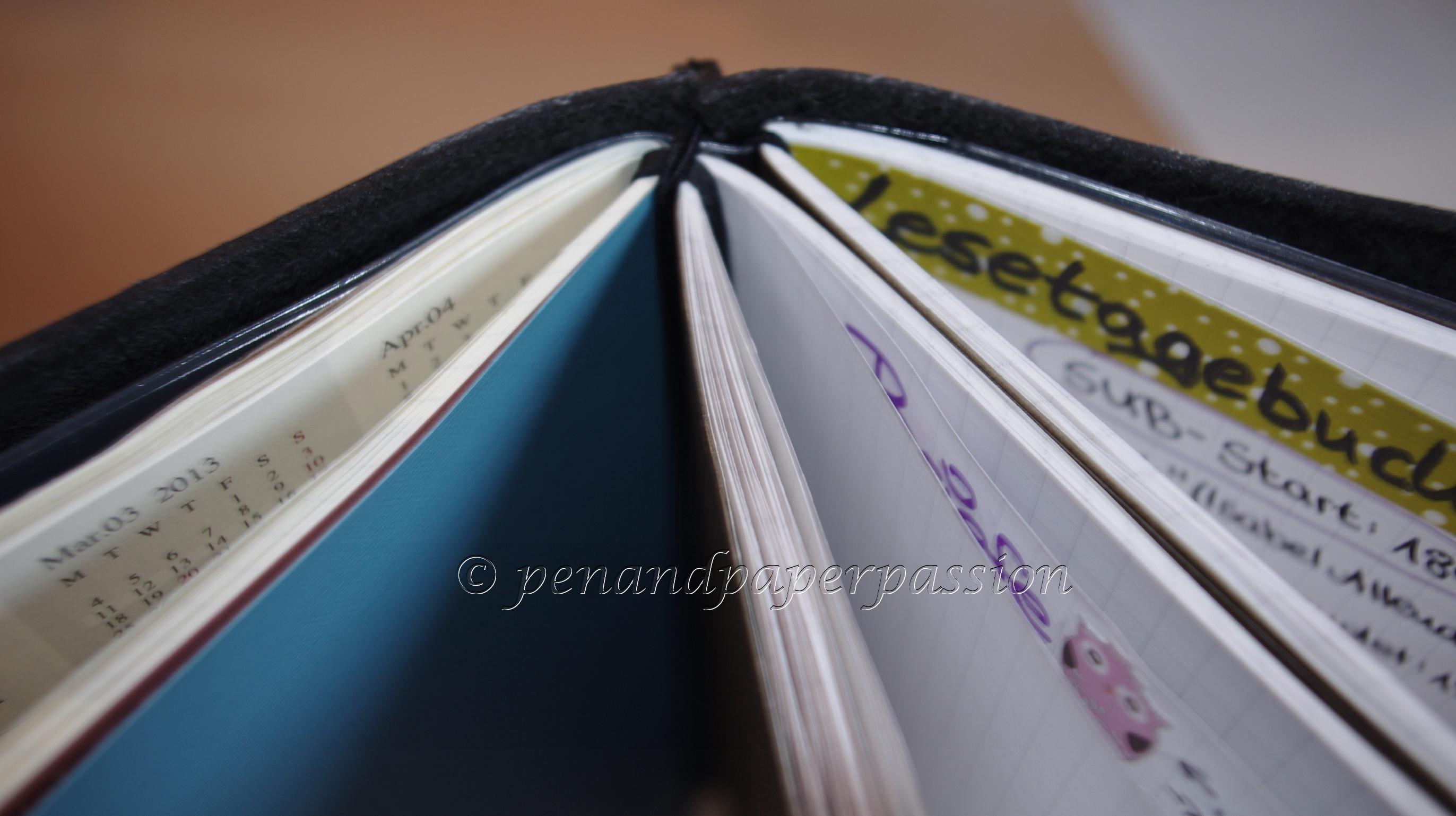 Midori Travelers Notebook 12