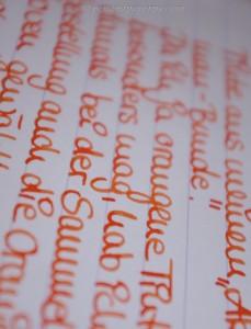 Akkerman Oranje Boven Foto 4