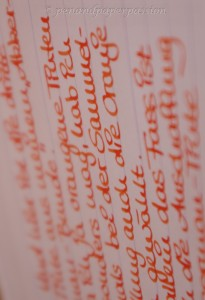 Akkerman Oranje Boven Foto 8