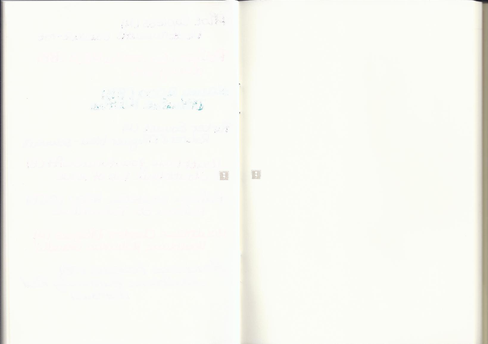 Semikolon Scan 2
