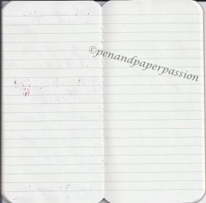 Paperscreen Fon Scan Rückseite