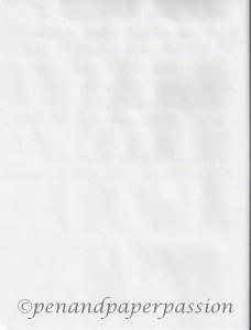 Paperscreen Scola iPad Papiertest hinten