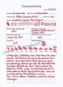 De Atramentis Erdbeertinte Scan
