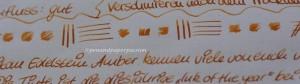 Pelikan Edelstein Amber 5